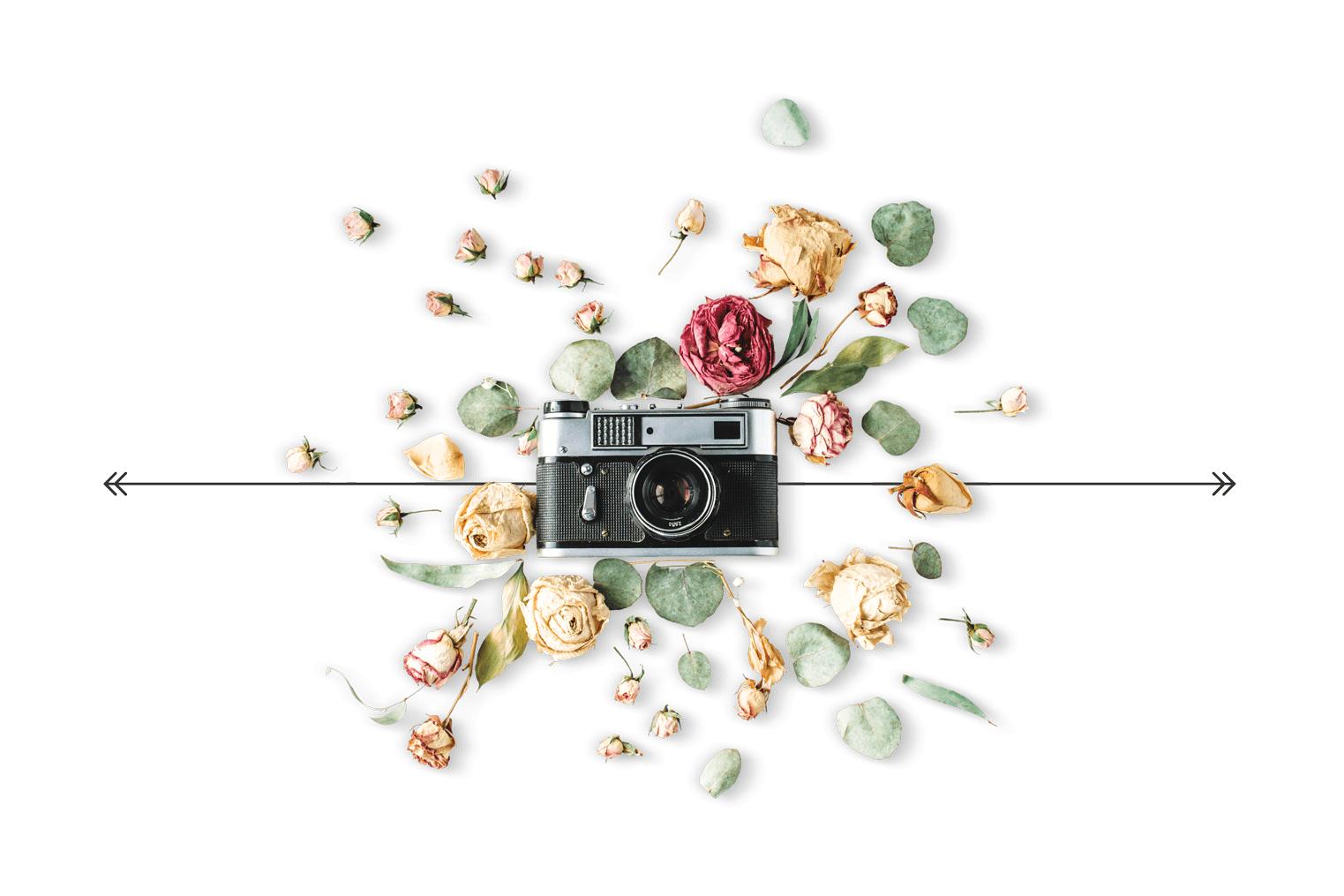 Camera graphic for our wedding photography page
